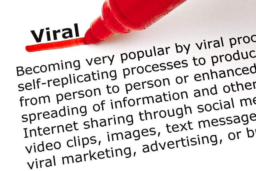 Viral Video Media Training